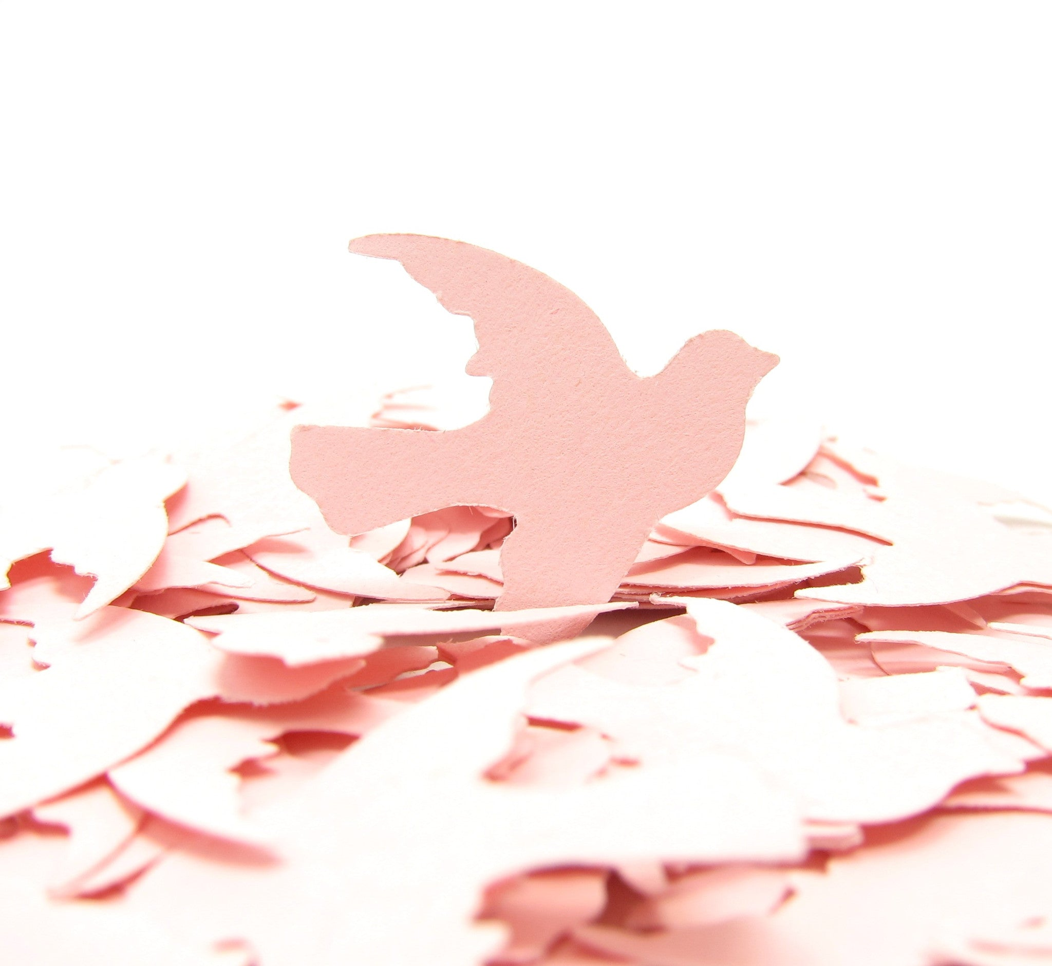 Dove Confetti Bird Die Cut Paper Punch Embellishments | Brown Eyed Rose
