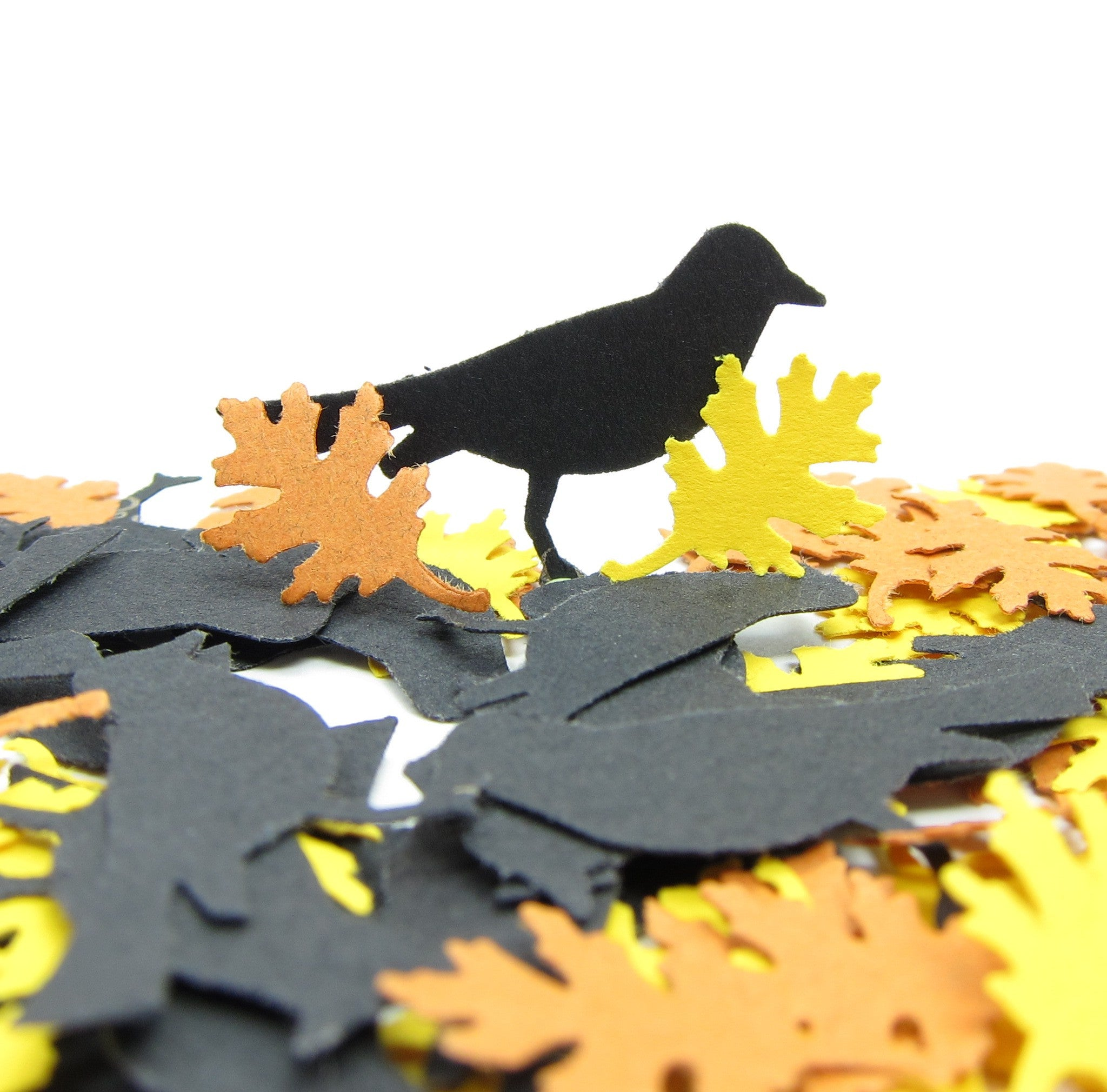 Blackbird and oak leaf confetti