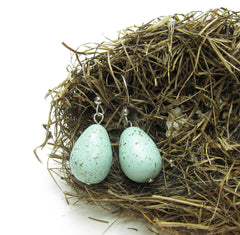 Robin's egg earrings on sterling silver ear wires