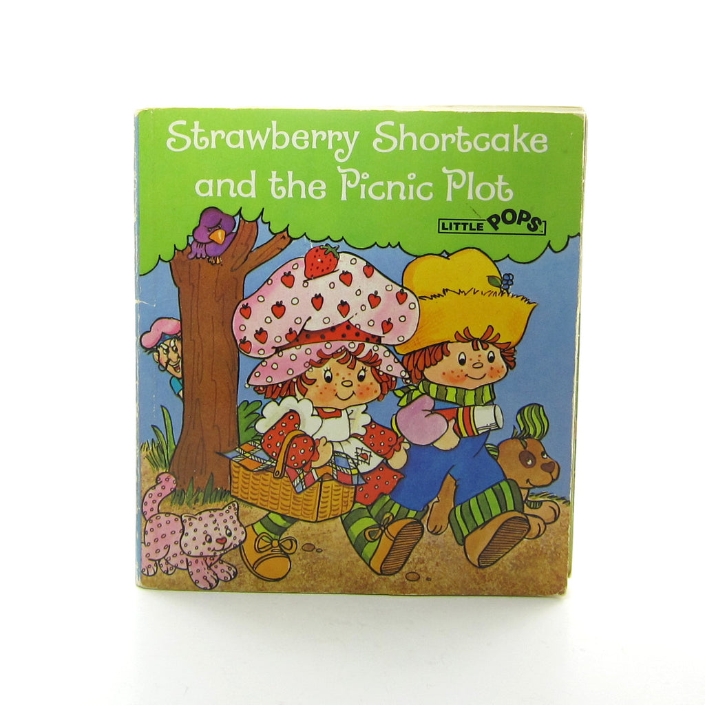 Strawberry Shortcake and the Picnic Plot Little Pops Book