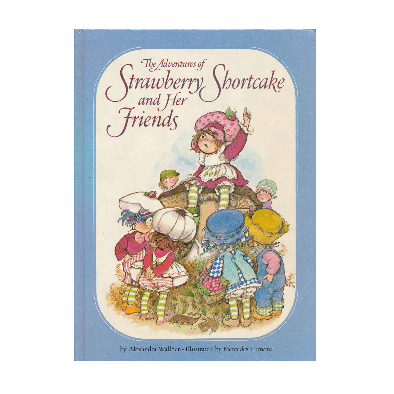 The Adventures of Strawberry Shortcake and Her Friends book