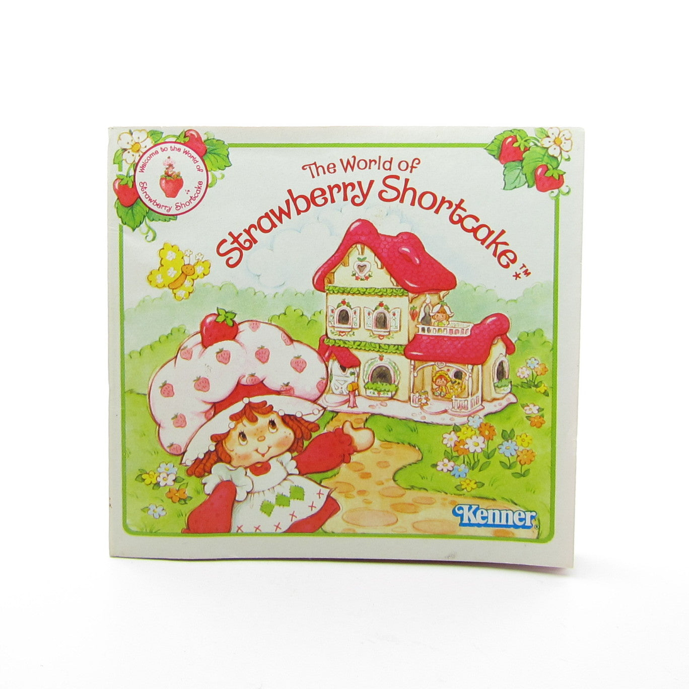 The World of Strawberry Shortcake Berry Happy Home brochure