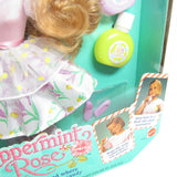 Lemon Kiss Lily Peppermint Rose doll box with wear