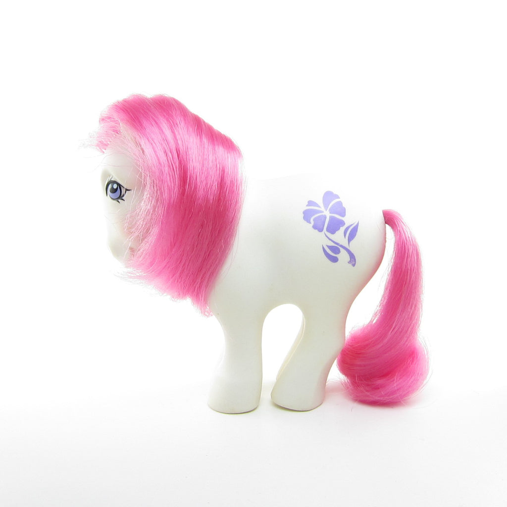 February Violet Birthflower Ponies Vintage G1 Mail Order My Little Pony