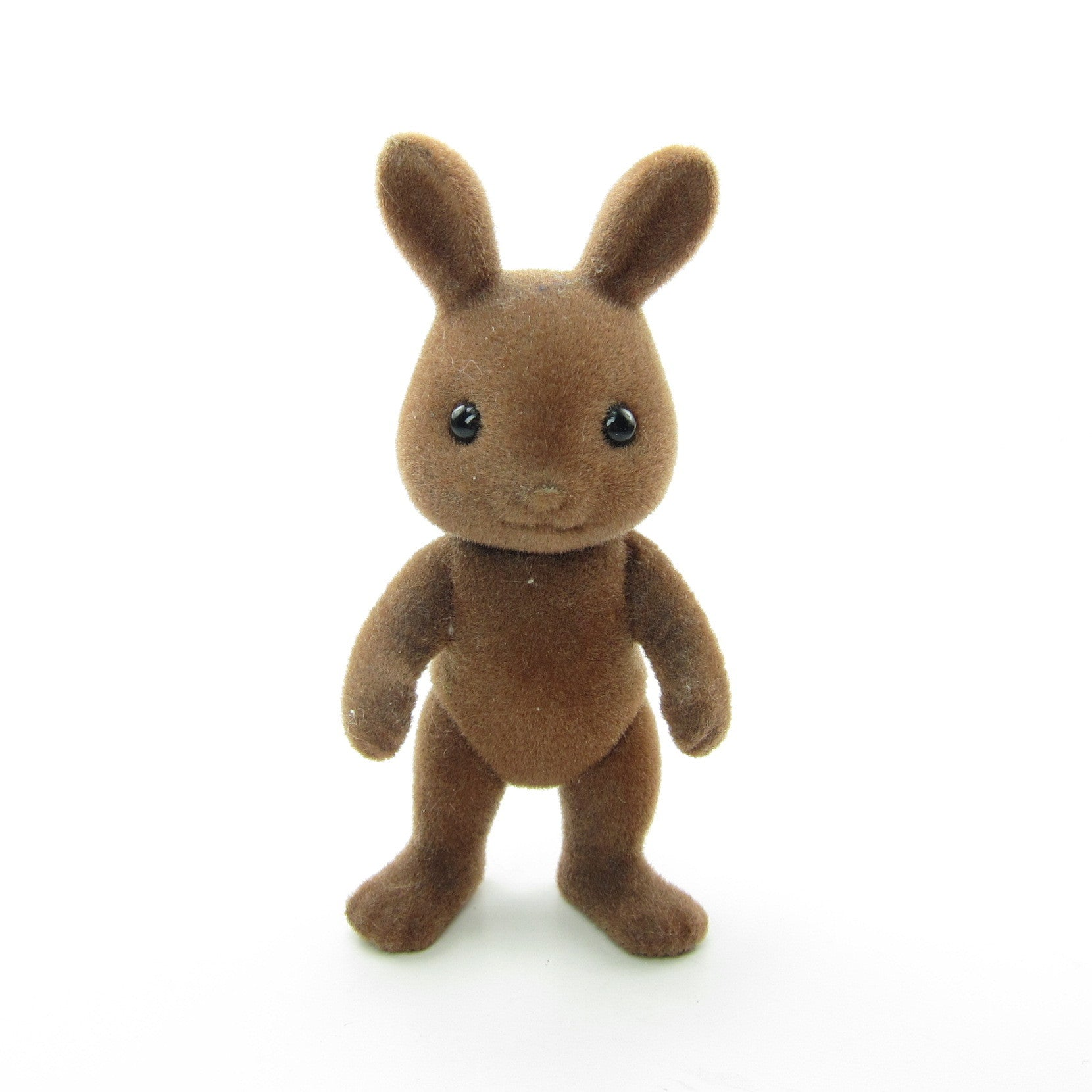 Wildwood brown rabbit