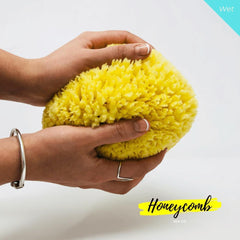18 cm Honeycomb Organic Greek Sea Sponge - Natural Sea Sponge