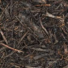 How to Mulch Your Garden