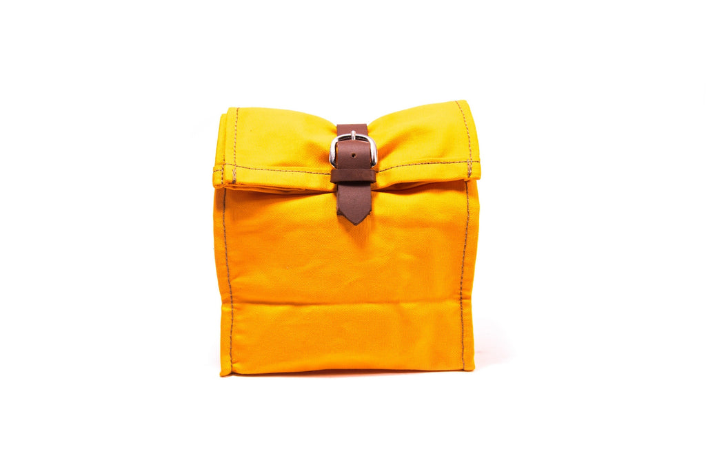 Leather and Canvas Lineo Pouch Bag - Tan on Yellow