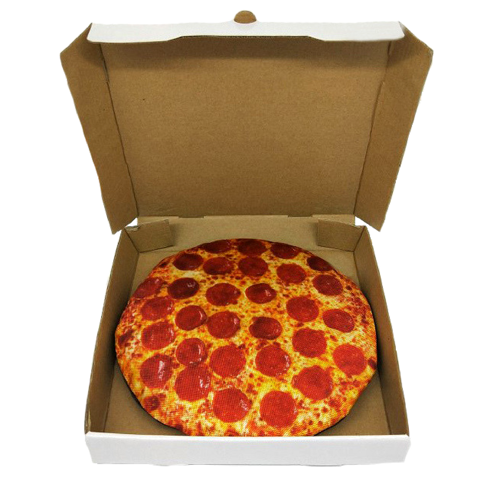 "Pizza in a Delivery Box 10""  Toy Frisbee"
