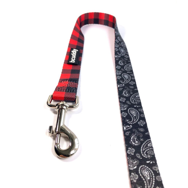 Red Plaid & Paisley Leash by Bcuddley