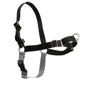 PetSafe Easy Walk Harness to Discourage Pulling Dogs
