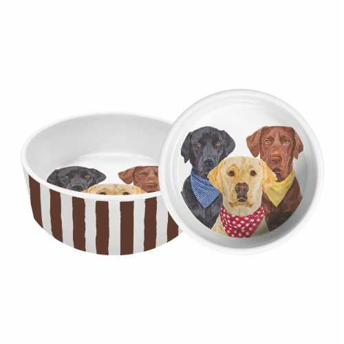 The Three Musketeers Large Dog Dish