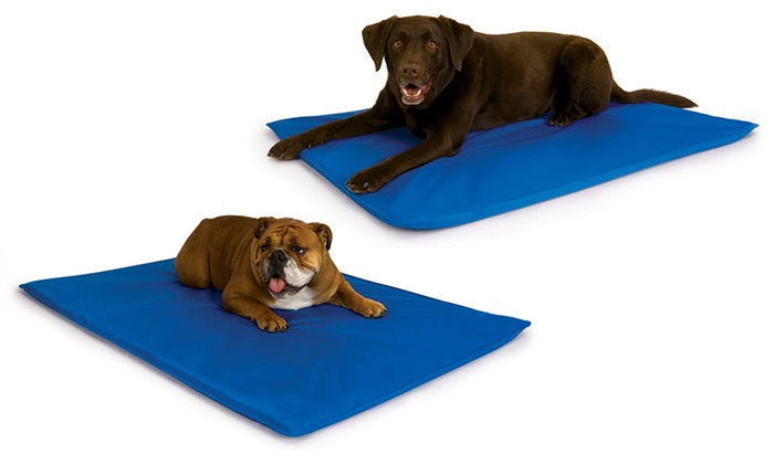Cooling Gel Pads for Dogs by K&H