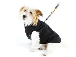 Pawz All Weather 2 in 1 Coat with Harness - Black