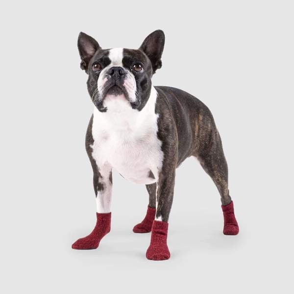 Canada Pooch Cambridge Socks for Dogs