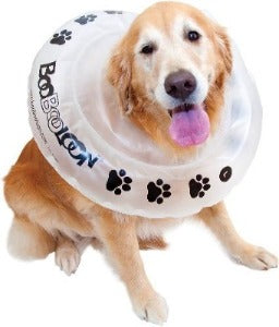 BooBooLoon Recovery Collar XL