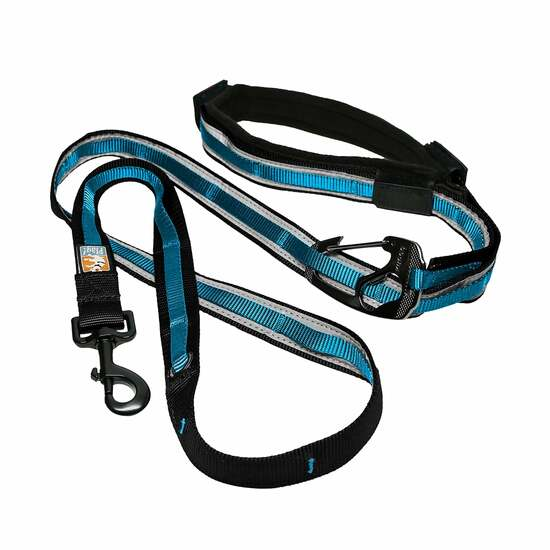 Quantum 6-In-1 Dog Leash - Black & Blue