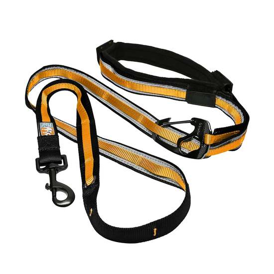Quantum 6-In-1 Dog Leash - Black & Orange
