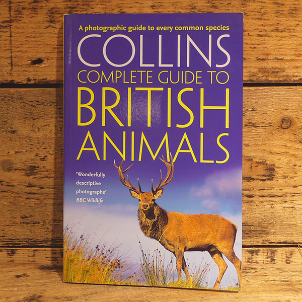 Complete Guide To British Animals