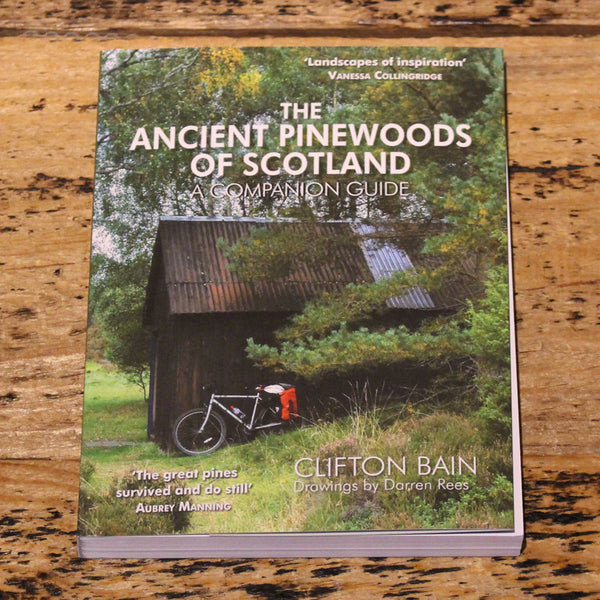The Ancient Pinewoods Of Scotland - Clifton Bain
