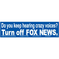Do you keep hearing crazy voices? Bumper Sticker