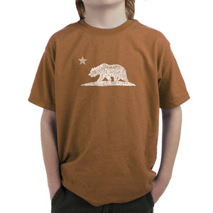 LA Pop Art Boy's Word Art T-shirt - California Bear