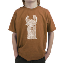 Load image into Gallery viewer, LA Pop Art Boy's Word Art T-shirt - Llama