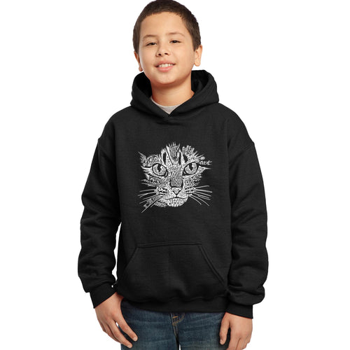 LA Pop Art  Boy's Word Art Hooded Sweatshirt - Cat Face