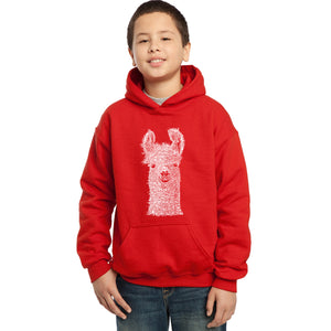 LA Pop Art Boy's Word Art Hooded Sweatshirt - Llama