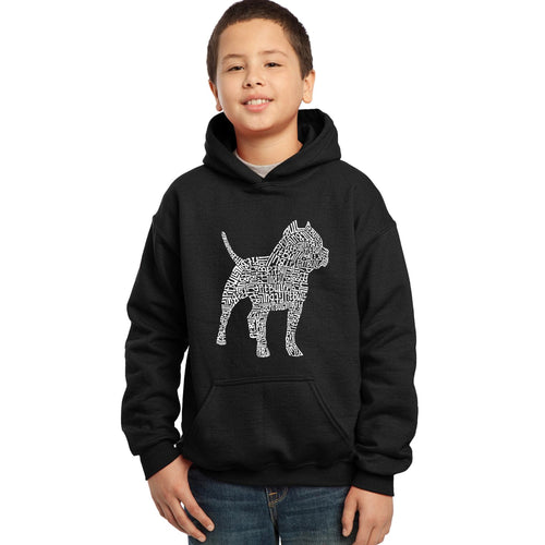 LA Pop Art  Boy's Word Art Hooded Sweatshirt - Pitbull