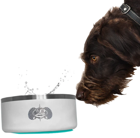 Non Tipping Dog Bowl