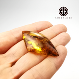 Natural Amber Handmade Rhombus Cabochon With Insects