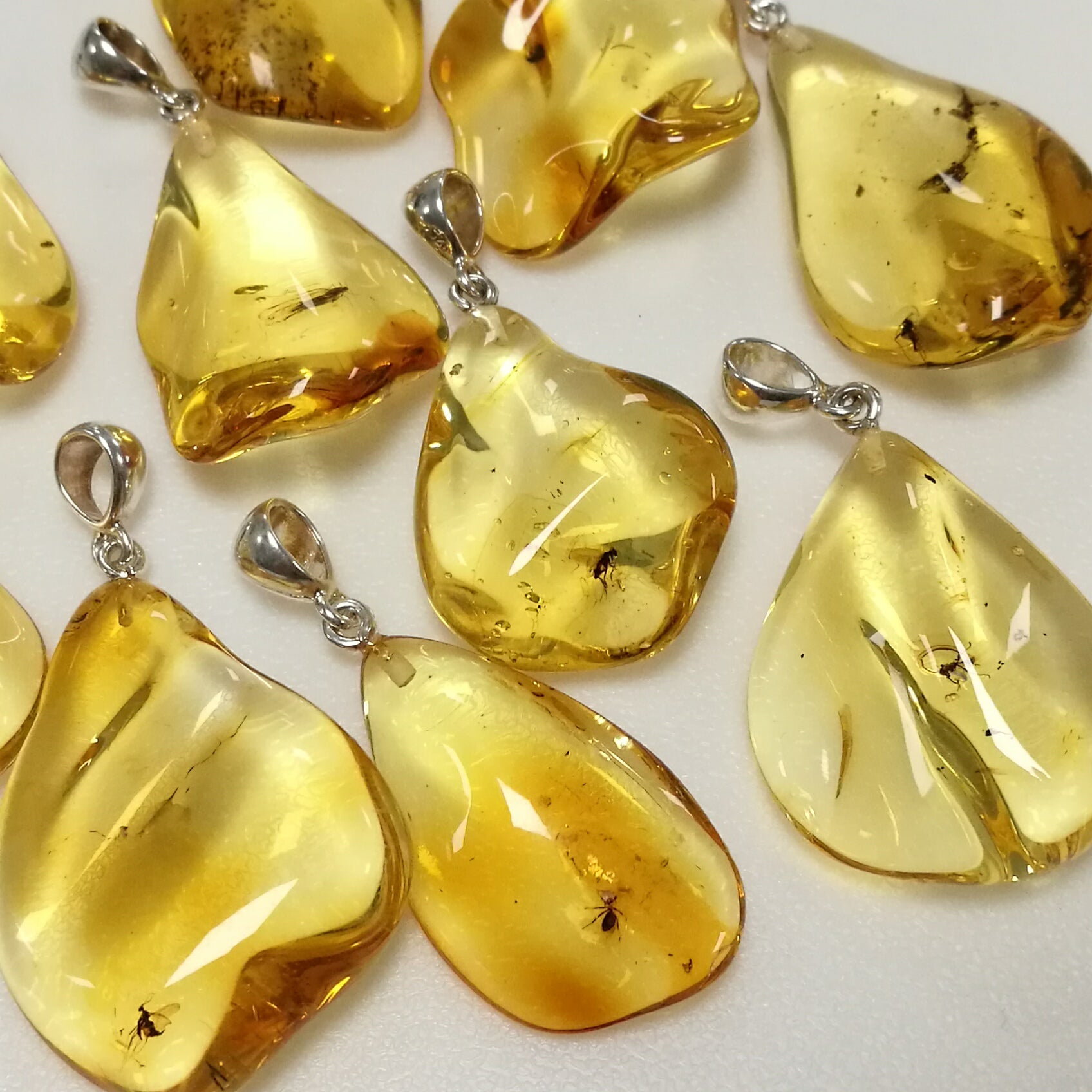 Insect Amber Wave Pendant Sterling Silver