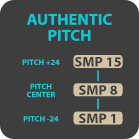 Authentic pitch logo