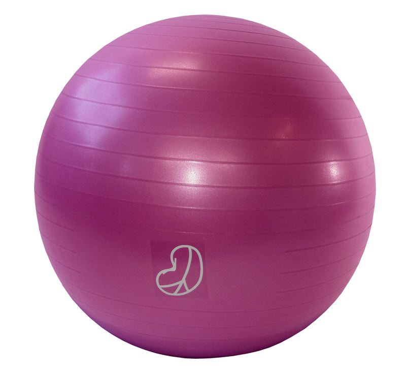Burst Resistant Exercise Ball Hibiscus