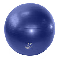 Burst Resistant Exercise Ball Grape