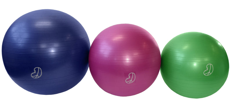 Burst Resistant Physio Exercise Swill Balls with air pump