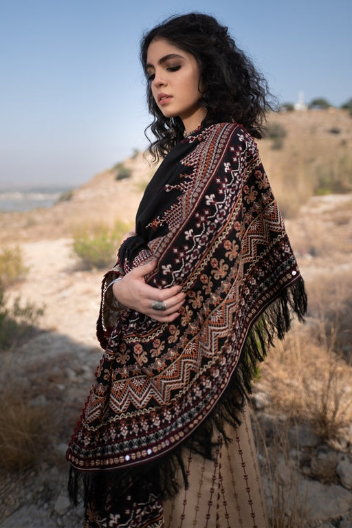 Qalamkar Luxury Shawl Collection 2020 KS-08