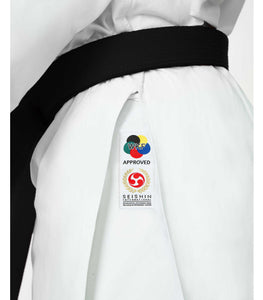 The Seishin Gi - Seishin International  - 9