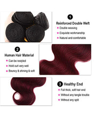 Remy Brazilian Human Hair Bundles Weaves with 4x4 Lace Closure Body Wave Hair 1B/99J Color