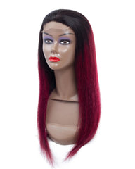 Remy Human Hair Straight 4x4 Lace Closure Wig 8-26inch 1B/99J Color