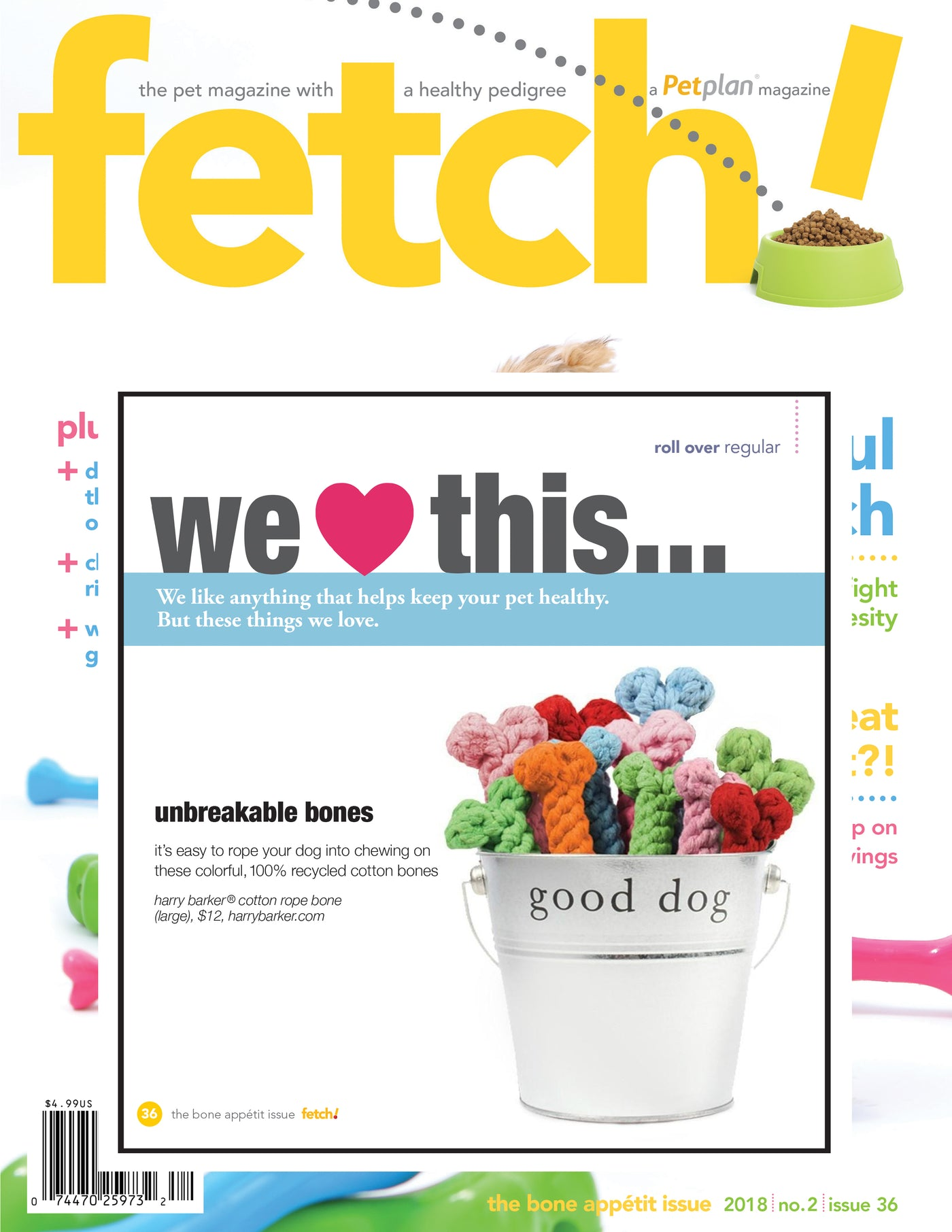 Fetch 2018 No. 2 Issue 36