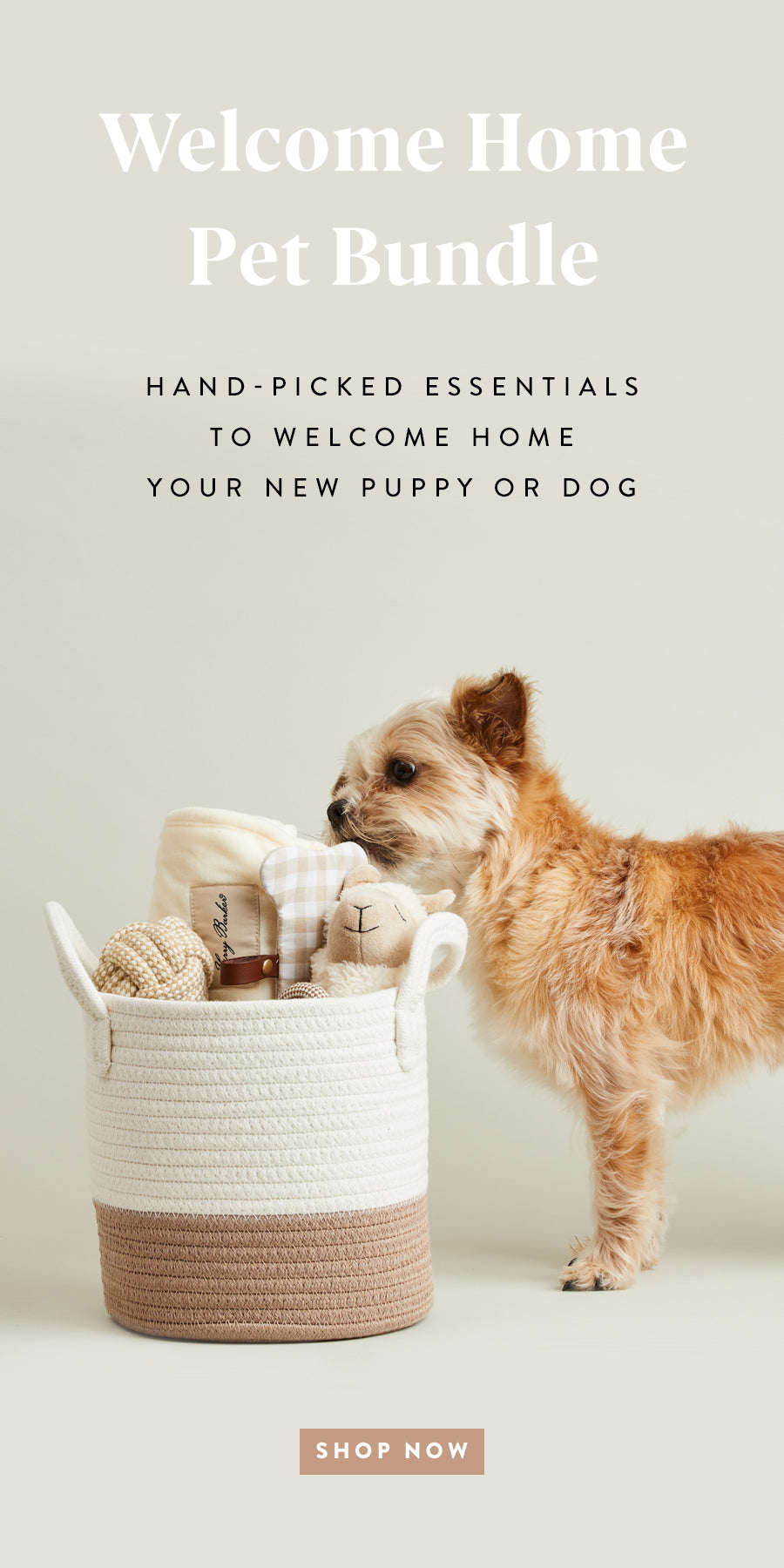 Welcome Home Pet Bundle. Hand-picked essentials to welcome home your puppy or dog. Shop Now.