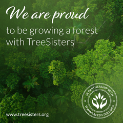 We are proud to be growing a Rain Forest with TreeSisters   BB Group Business Consultancy