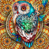 5D Amazing Mandala Owl Diamond Art Painting