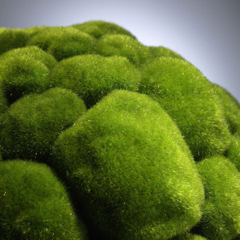 Large Moss Sphere design by Cyan Design