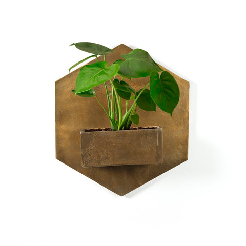 Ozur Hexagon Wall Planter