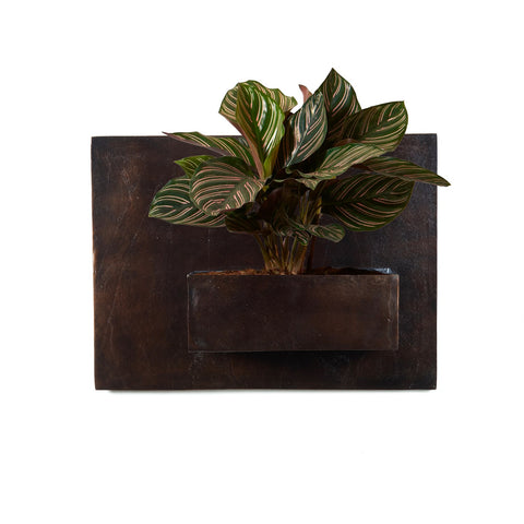 Ozur Rectangle Wall Planter