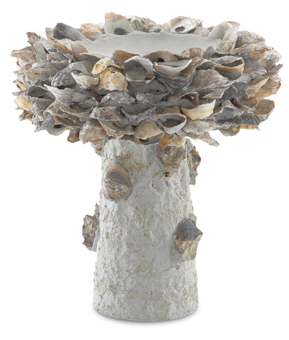 Oyster Shell Small Bird Bath