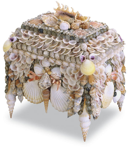 Boardwalk Shell Jewelry Box design by Currey & Company